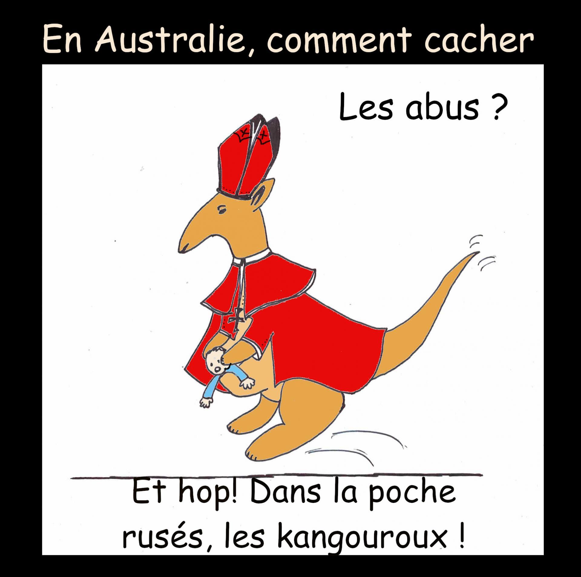 Synode australie kangouroux